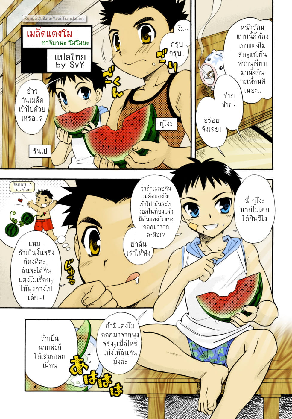 เมล็ดแตงโม-2